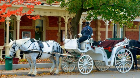 niagara_on_the_lake_horse_drawn_carriage