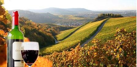 niagara_wine_region